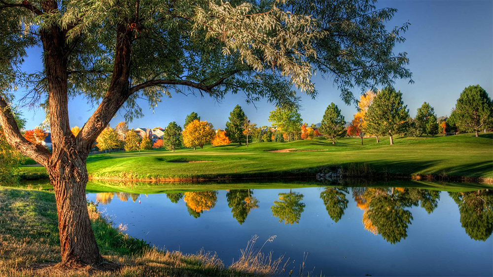 Golfbana under hösten